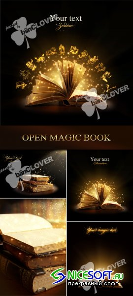 Open magic book 0102