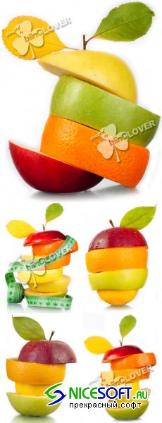 Background with slices fruits 0147