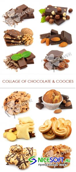 Collage of chocolate and cookies 0162