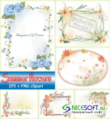 Летние цветы  | Summer Flowers (EPS + PNG clipart)