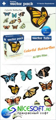 Premium Vector Pack – Colorful Butterflies