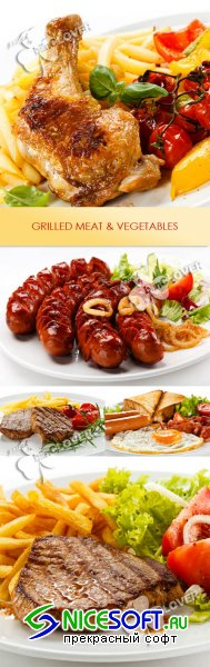 Grilled meat and vegetables 0238
