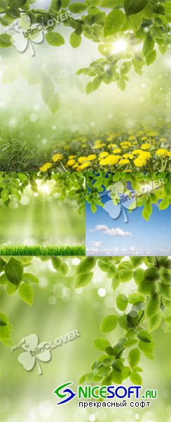 Spring background 0387