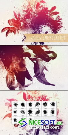 WeGraphics - Floral Emergencies