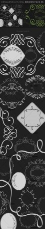 Ornamental Floral Photoshop Brushes Pack 58